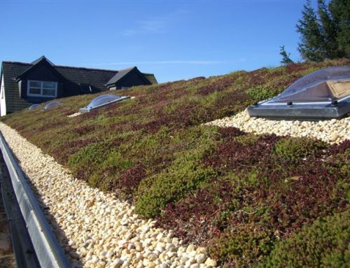 Permaroof Rubbercover EPDM Green roof